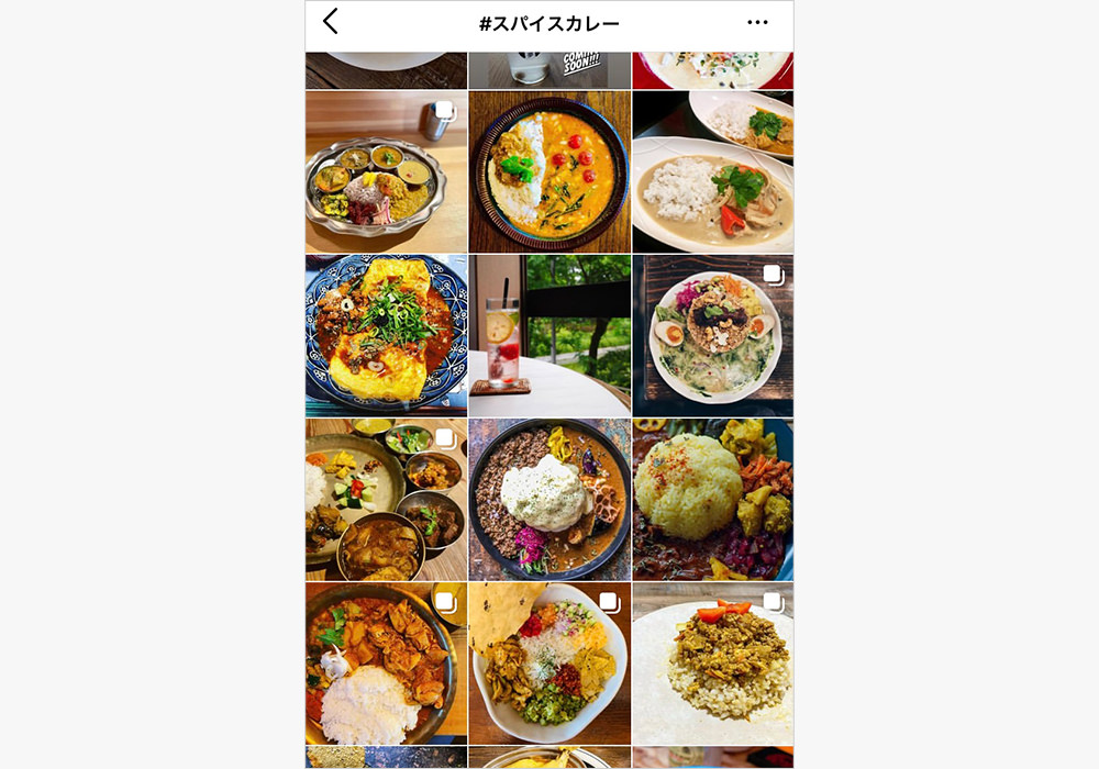 Instagram上に「#スパイスカレー」を付けて投稿されている写真の一例